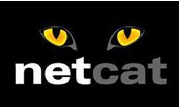 NetCAT Hack Grants Attackers Access to Sensitive Data from Intel